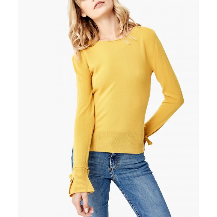 Image for Yellow pure cashmere jumper