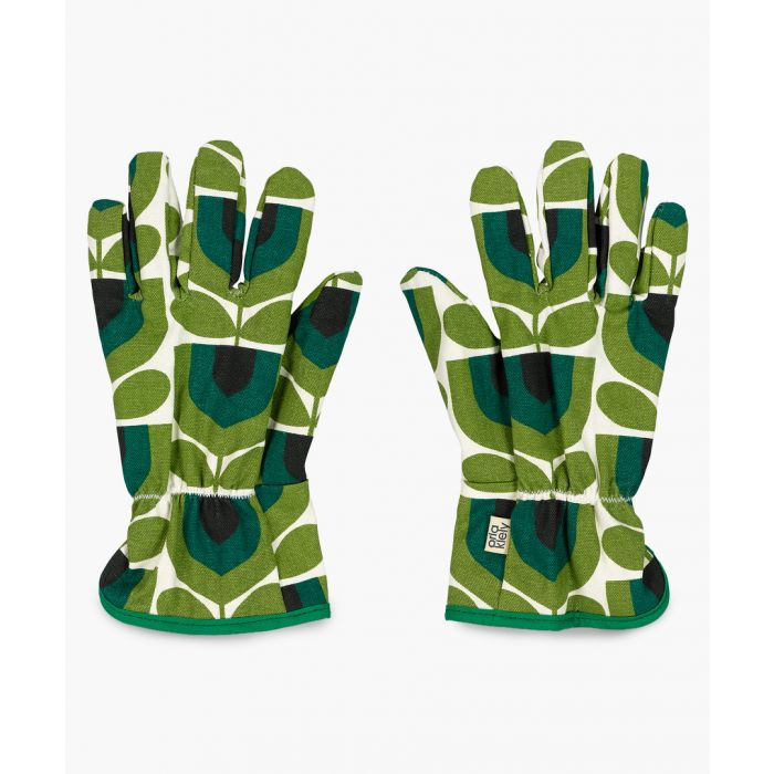 Image for Striped tulip green potting gloves