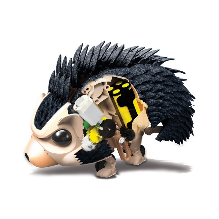 Image for Robotic Hedgehog