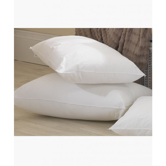 Image for 2pc Goose feather and down pillow set