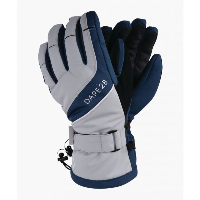 Image for Blue wing & argent grey gloves