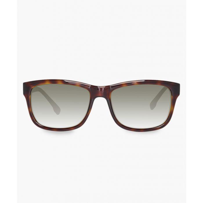 Image for Dane brown sunglasses