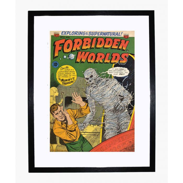 Image for Forbidden Worlds 11 framed print