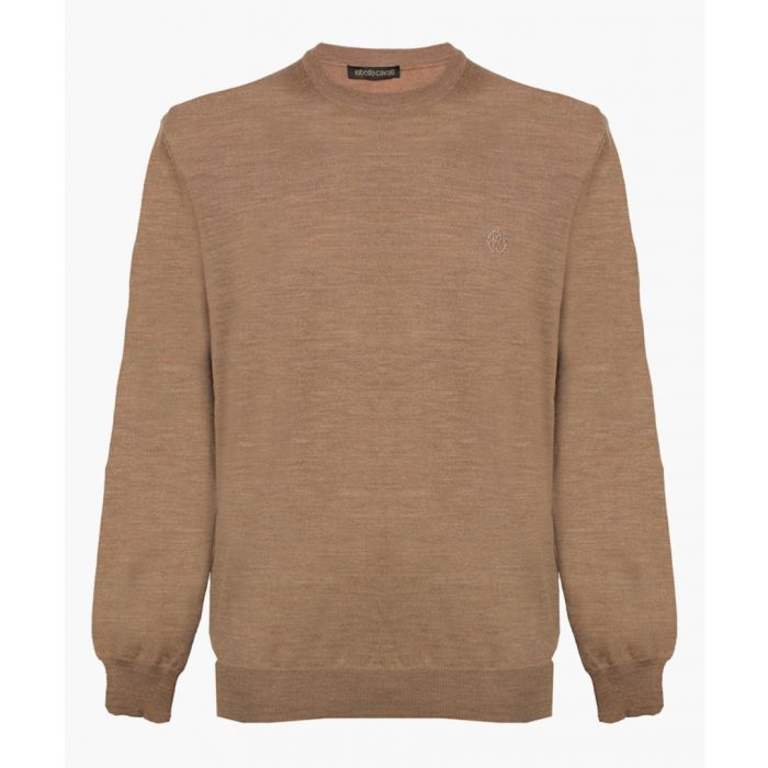 Image for Camel pure wool jumper