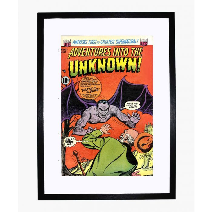 Image for Adventures into the Unknown 45 framed print