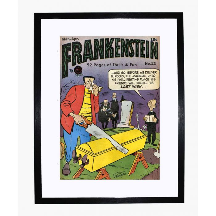 Image for Frankenstein 12 framed print