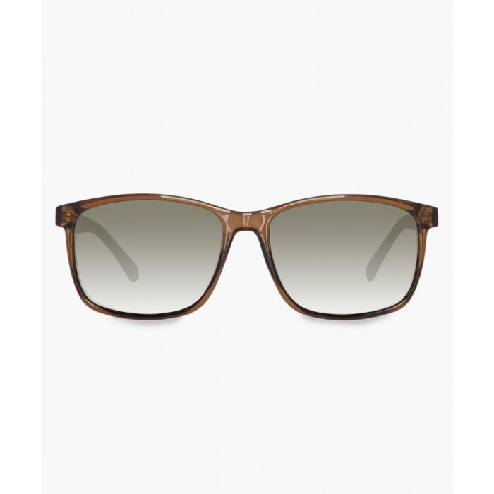 Image for Steiner brown sunglasses