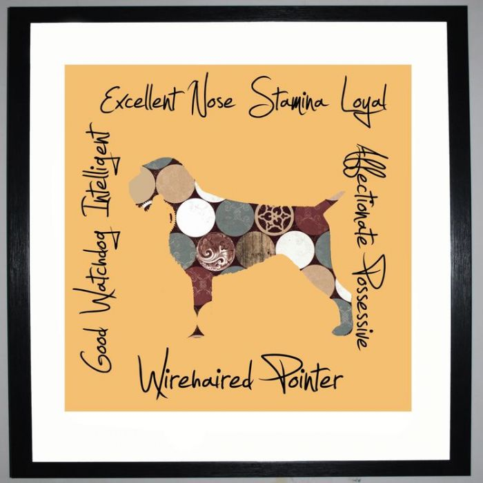 Image for Wirehaired Pointer - Dog Trait