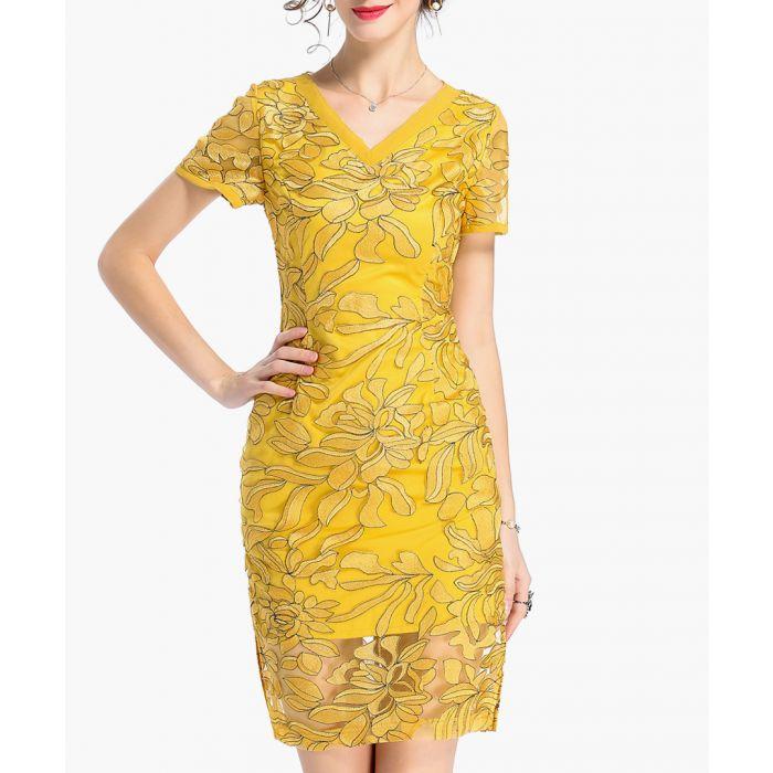 Image for Amber V-neck embroidered dress