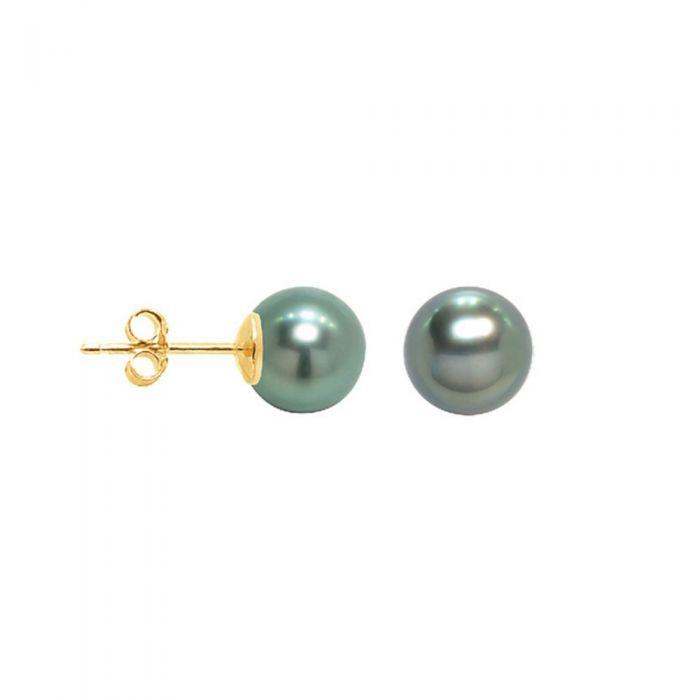 Image for Yellow gold tahitian pearl earrings