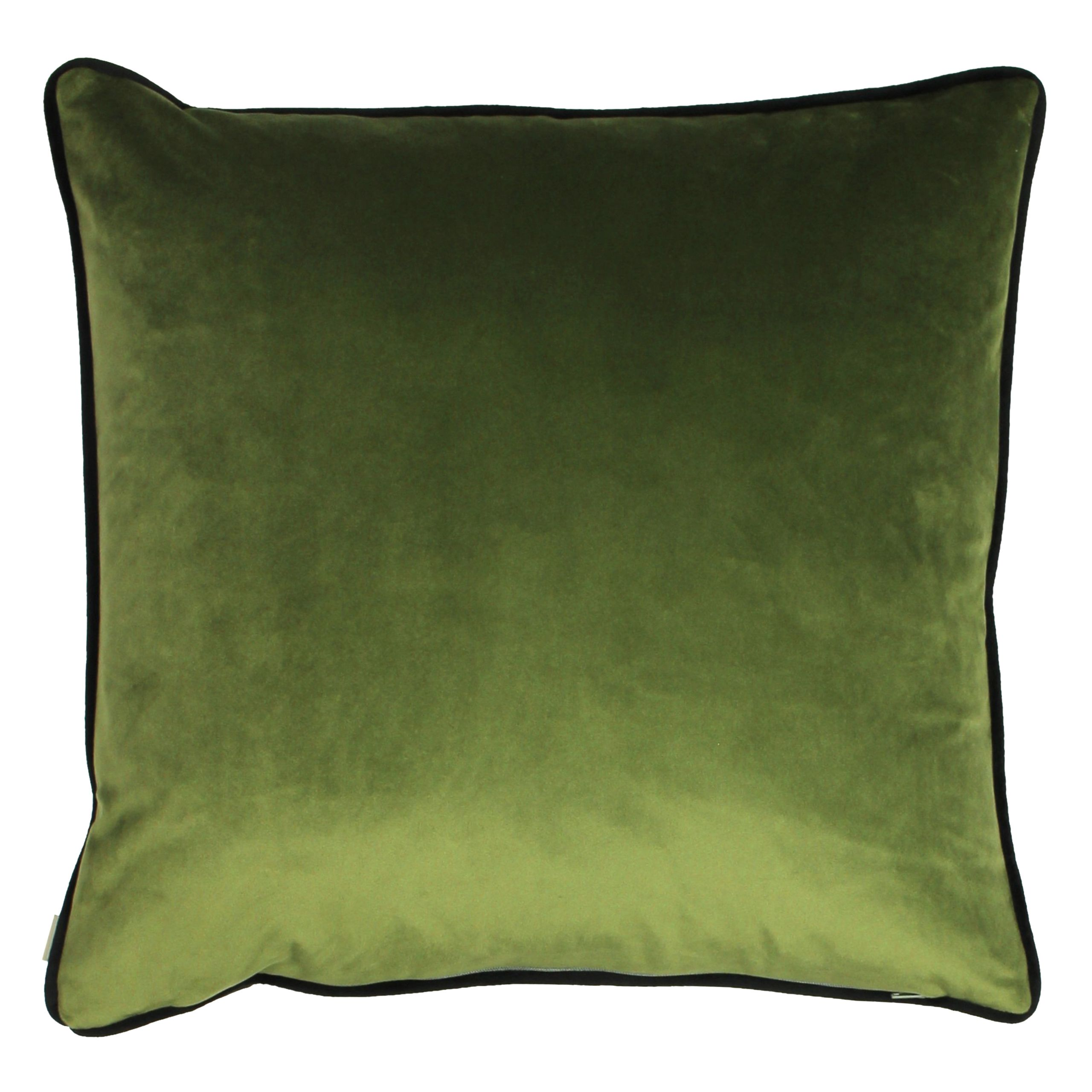 Midnight Garden Cushion