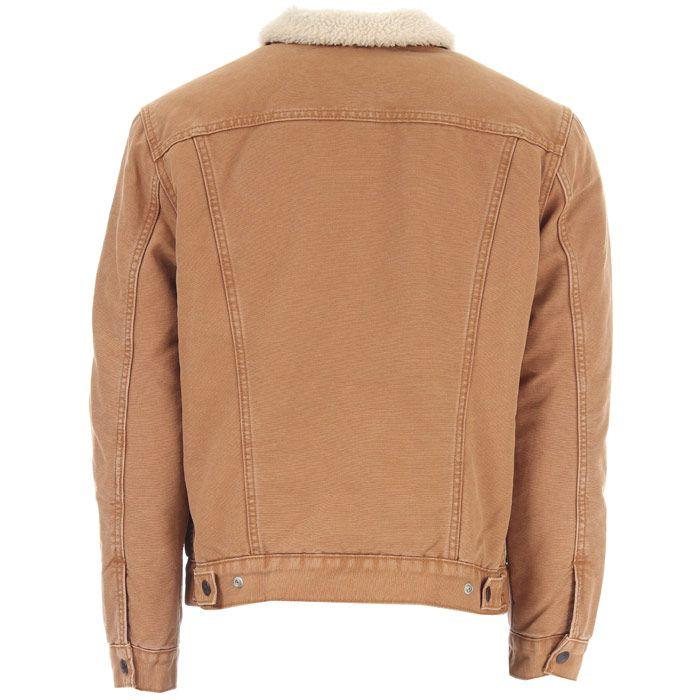 Men's Levis Type 3 Sherpa Jacket in Brown