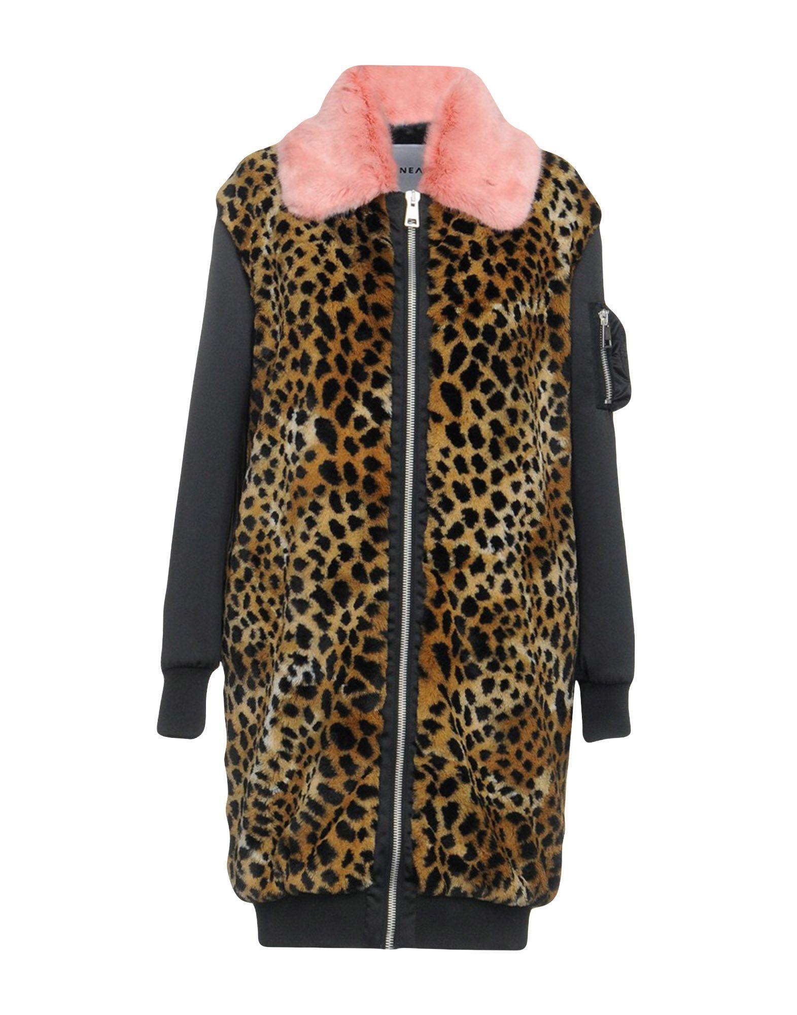 Ainea Women's Teddy Coat Polyester