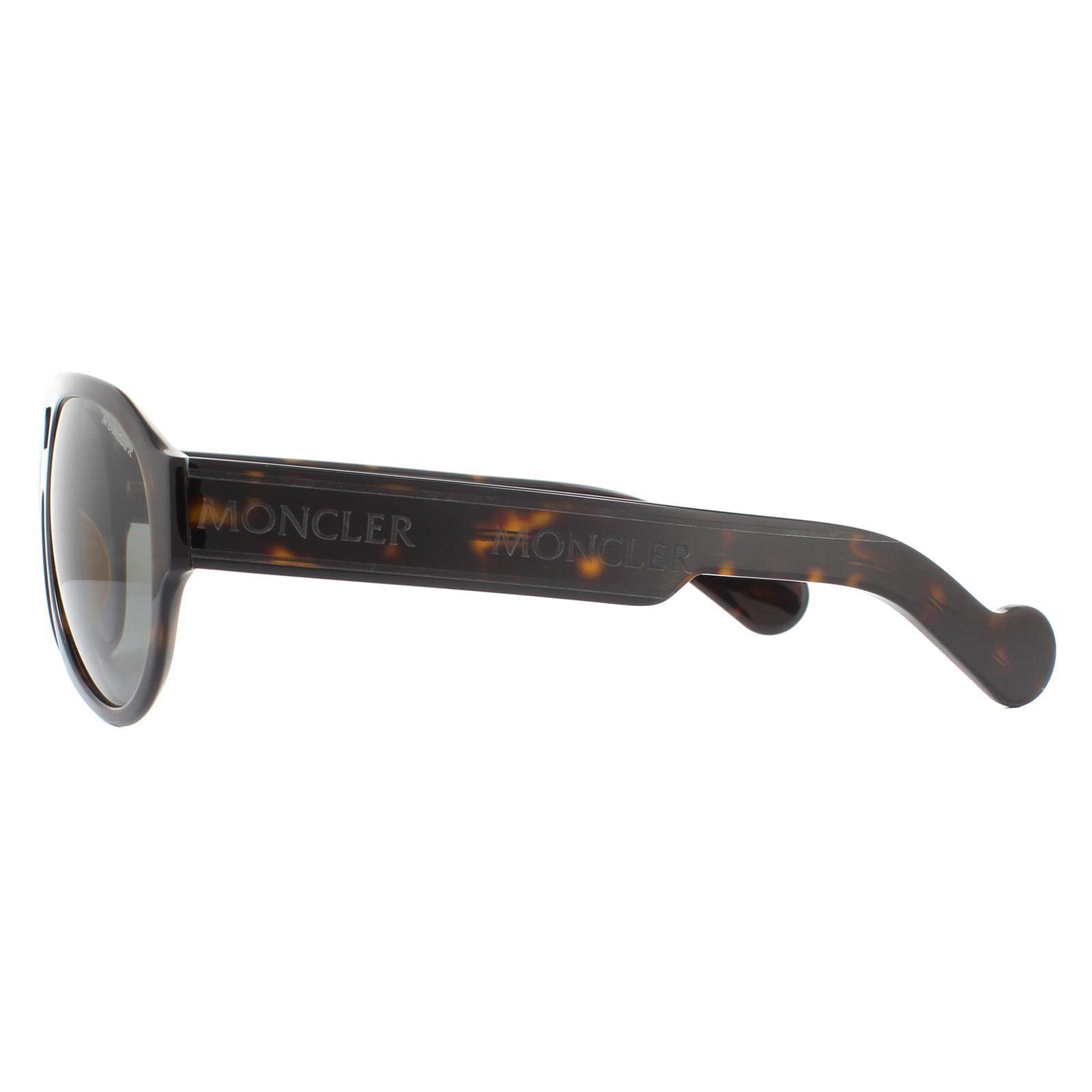Moncler Sunglasses ML0095 52A Dark Havana Smoke