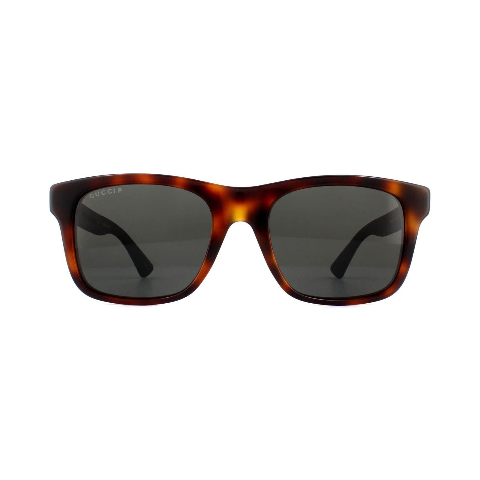 Gucci Sunglasses GG0008S 006 Havana Black Rubber Grey Polarized