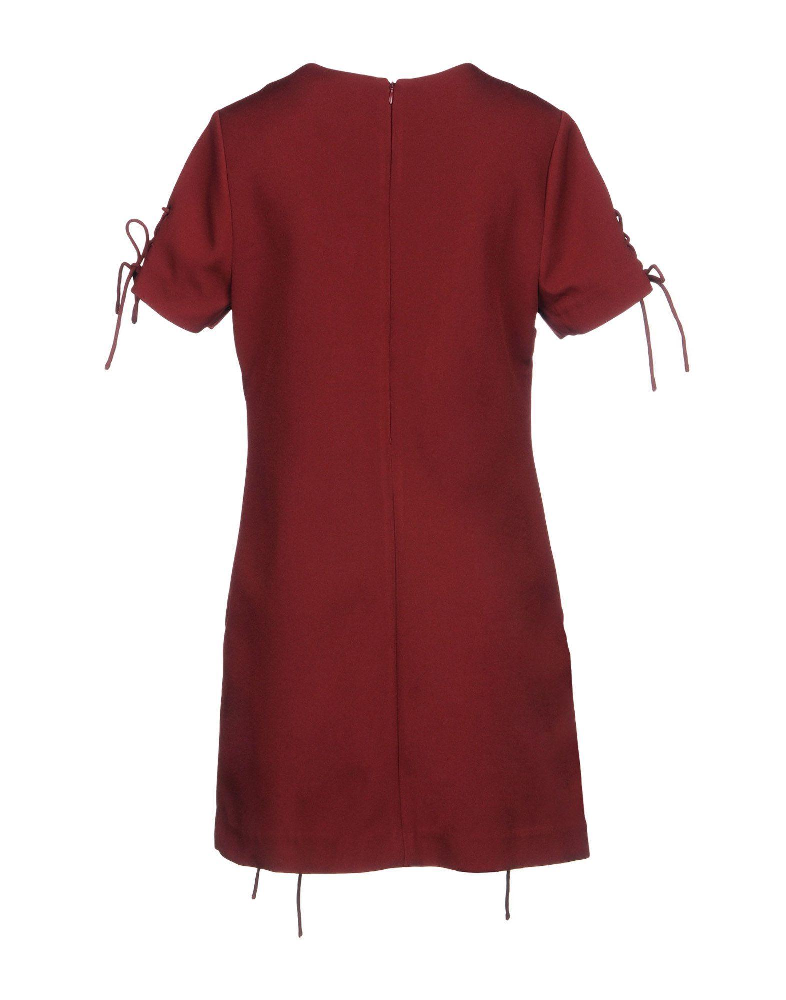 Kendall + Kylie Maroon Crepe Short Sleeve Dress