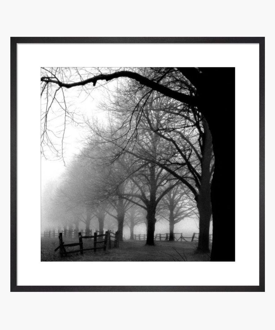 Black and white morning framed print