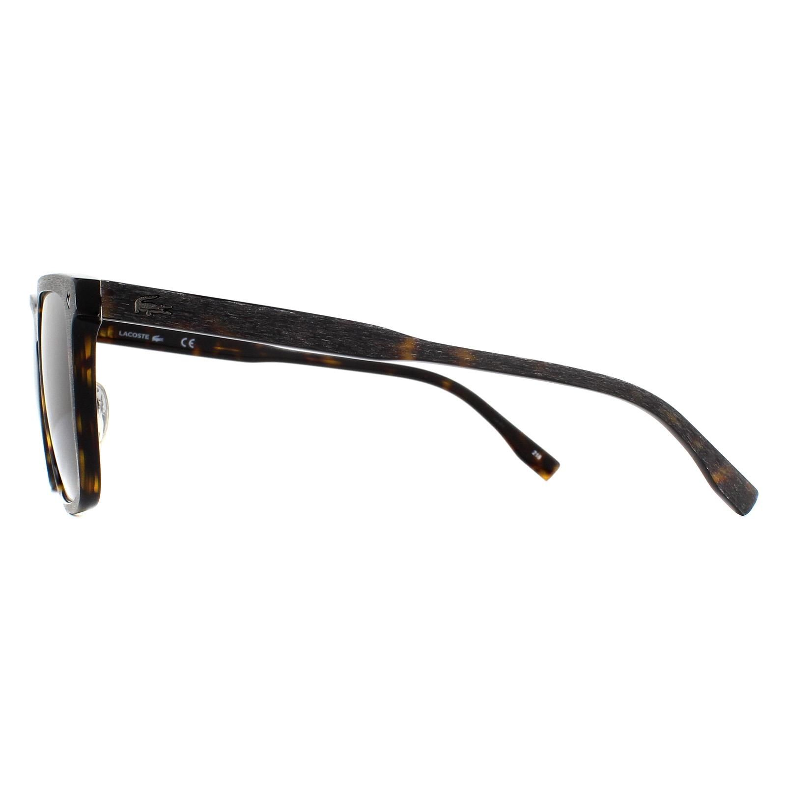 Lacoste Sunglasses L886S 214 Havana Green