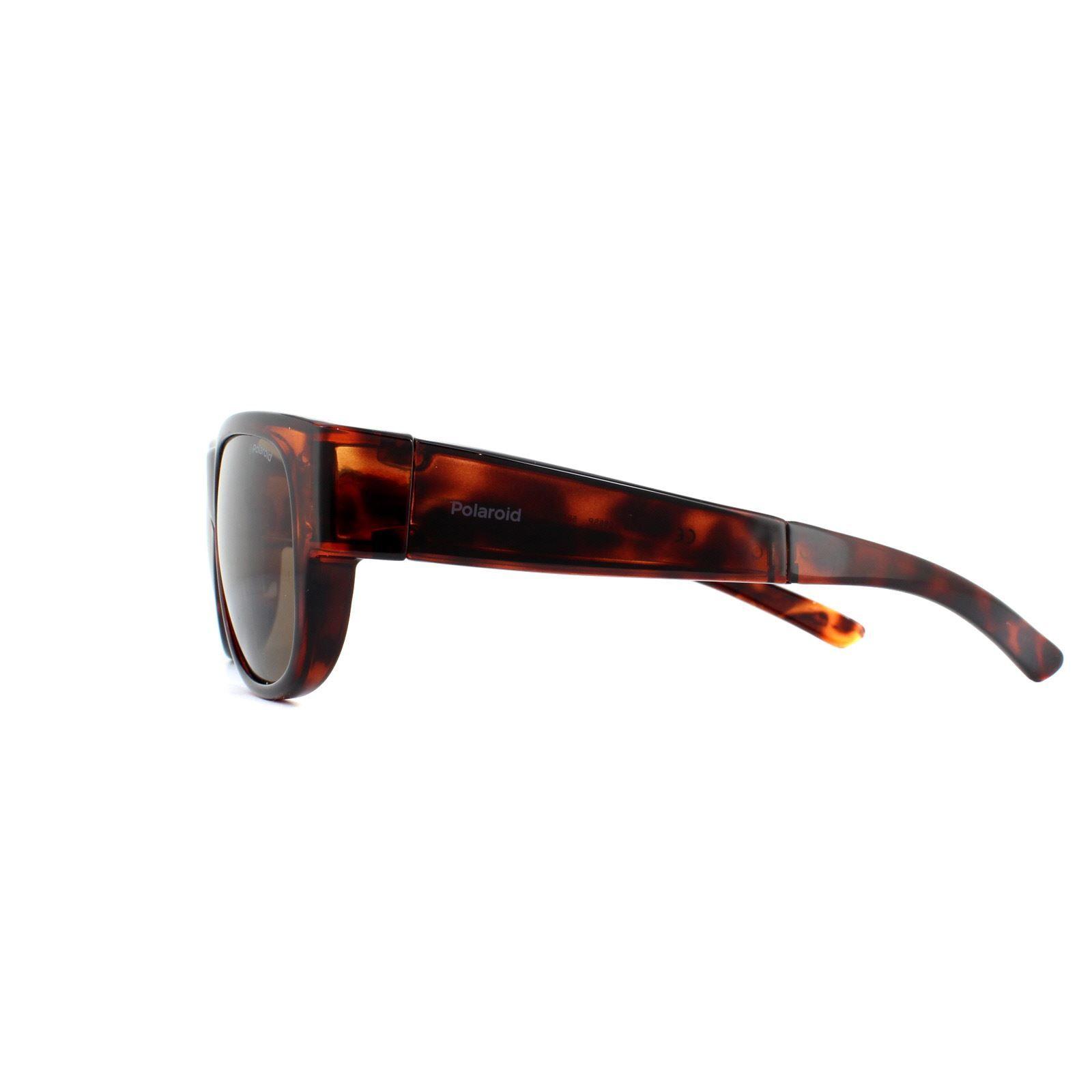Polaroid Suncovers Fitover Sunglasses PLD 9008/S 086 SP Dark Havana Bronze Polarized