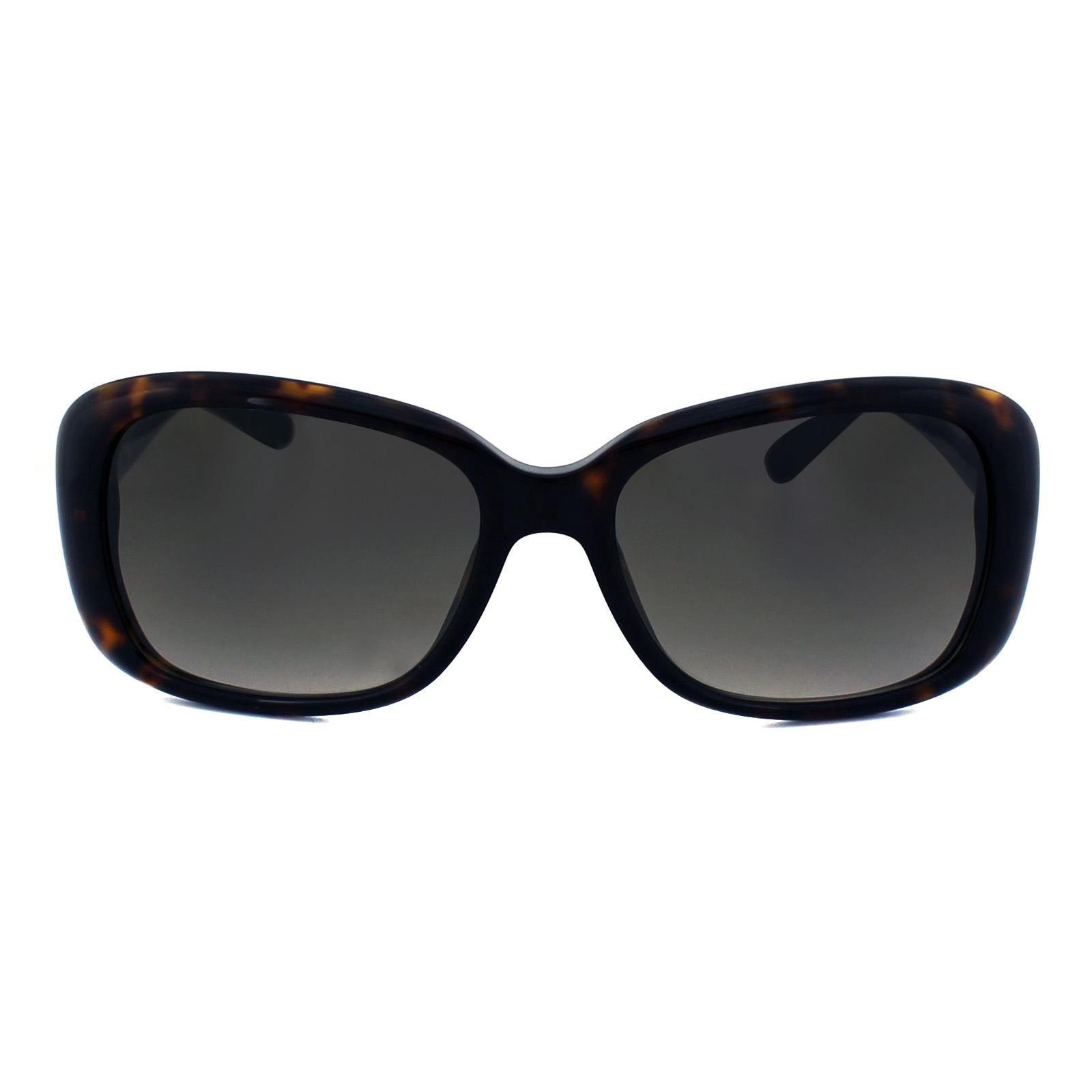 Boss Sunglasses 0613 5JO HA Havana Brown Brown Gradient