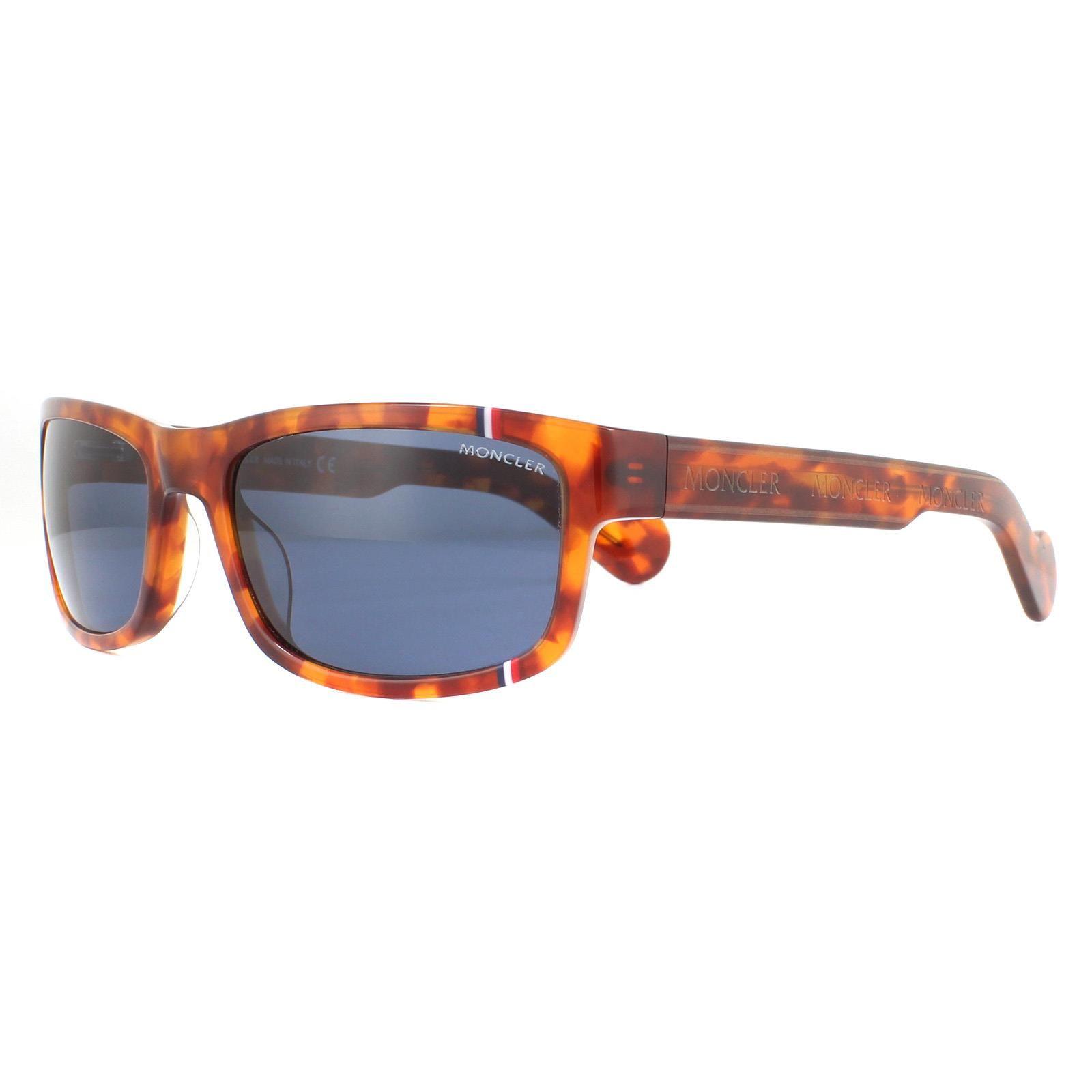 Moncler Sunglasses ML0114 53V Havana Blue