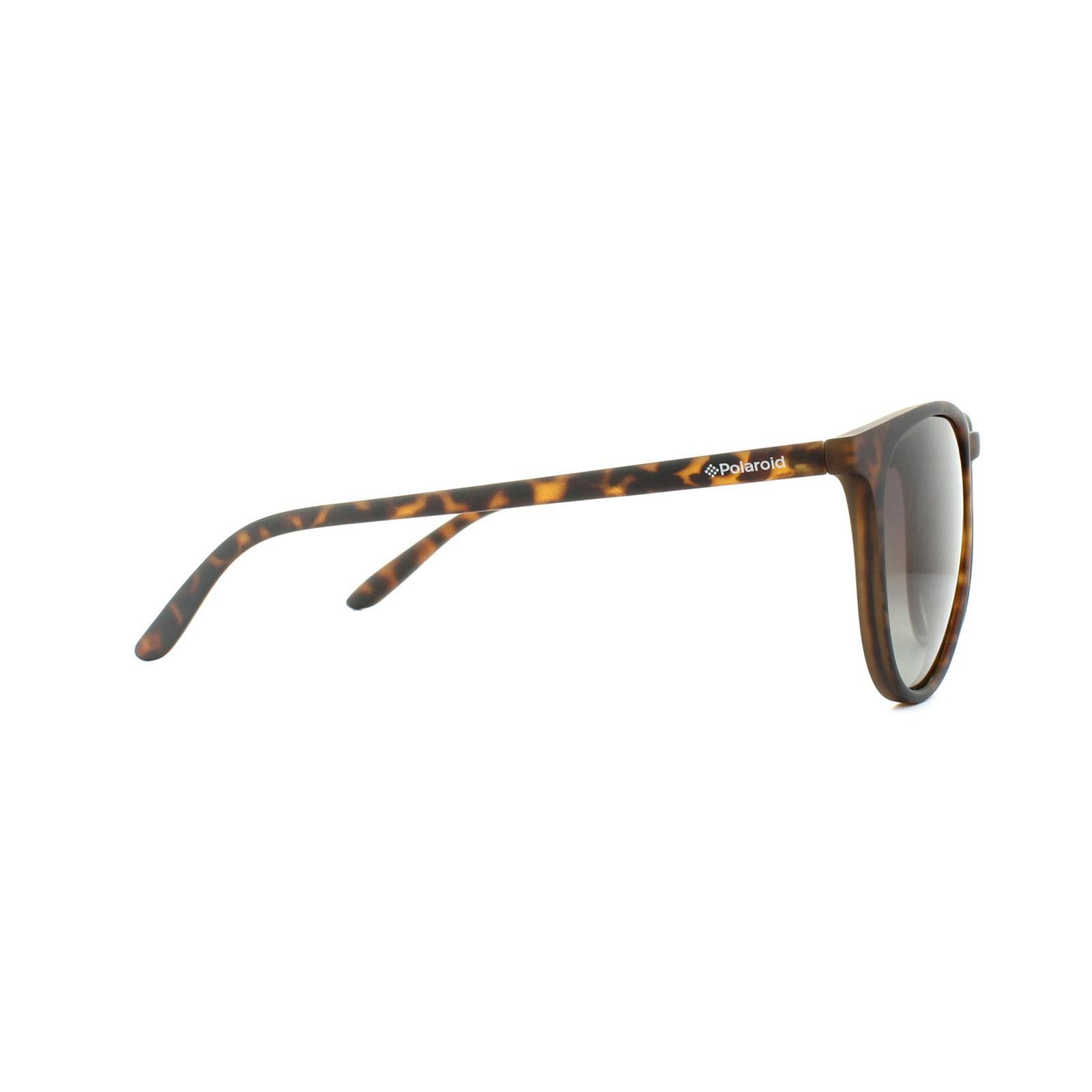 Polaroid Sunglasses PLD 6003/N/S V08 LA Havana Brown Gradient Polarized