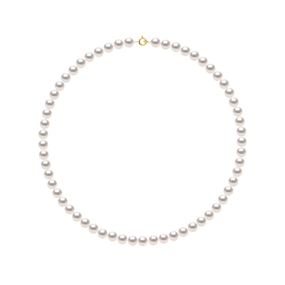 DIADEMA - Necklace - True Japanese Akoya Cultured Pearl - Quality AA+