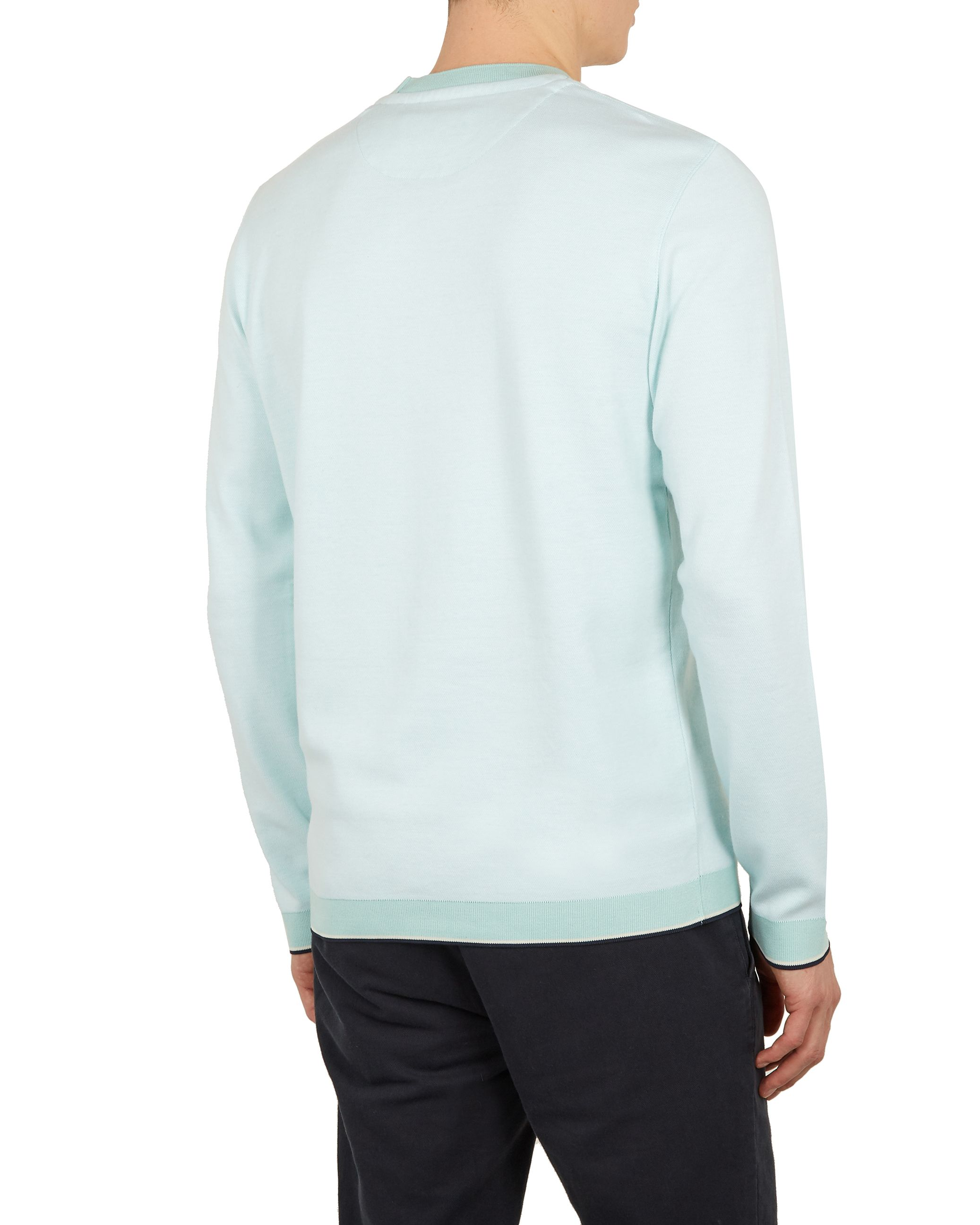 Ted Baker Toyde Long-Sleeved Oxford Jersey Crew Neck, Mint