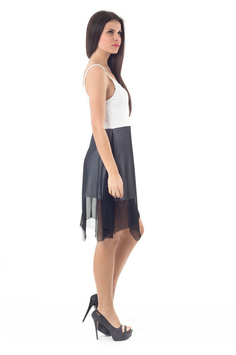 Two Tone Sheer Layer Dress