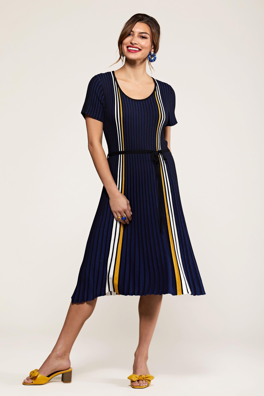 Navy Stripe Knit Pleated Dress