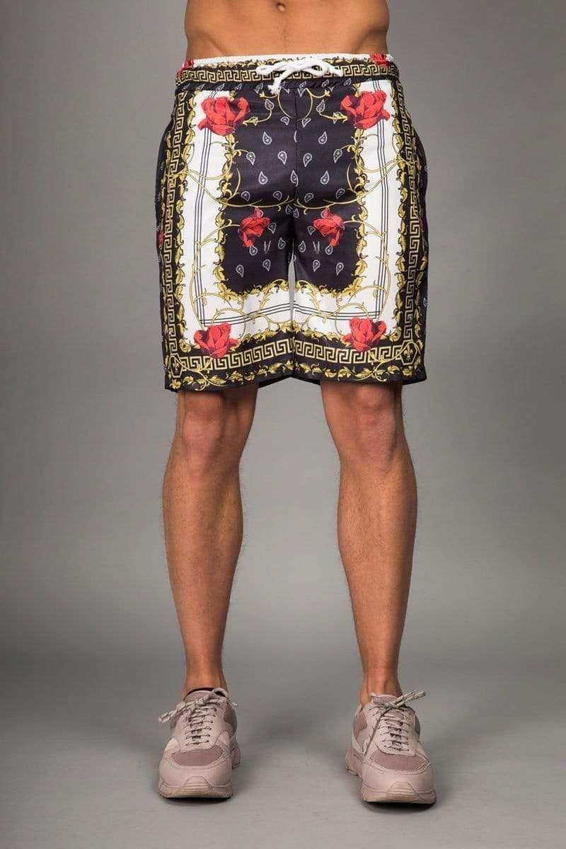Avi Shorts