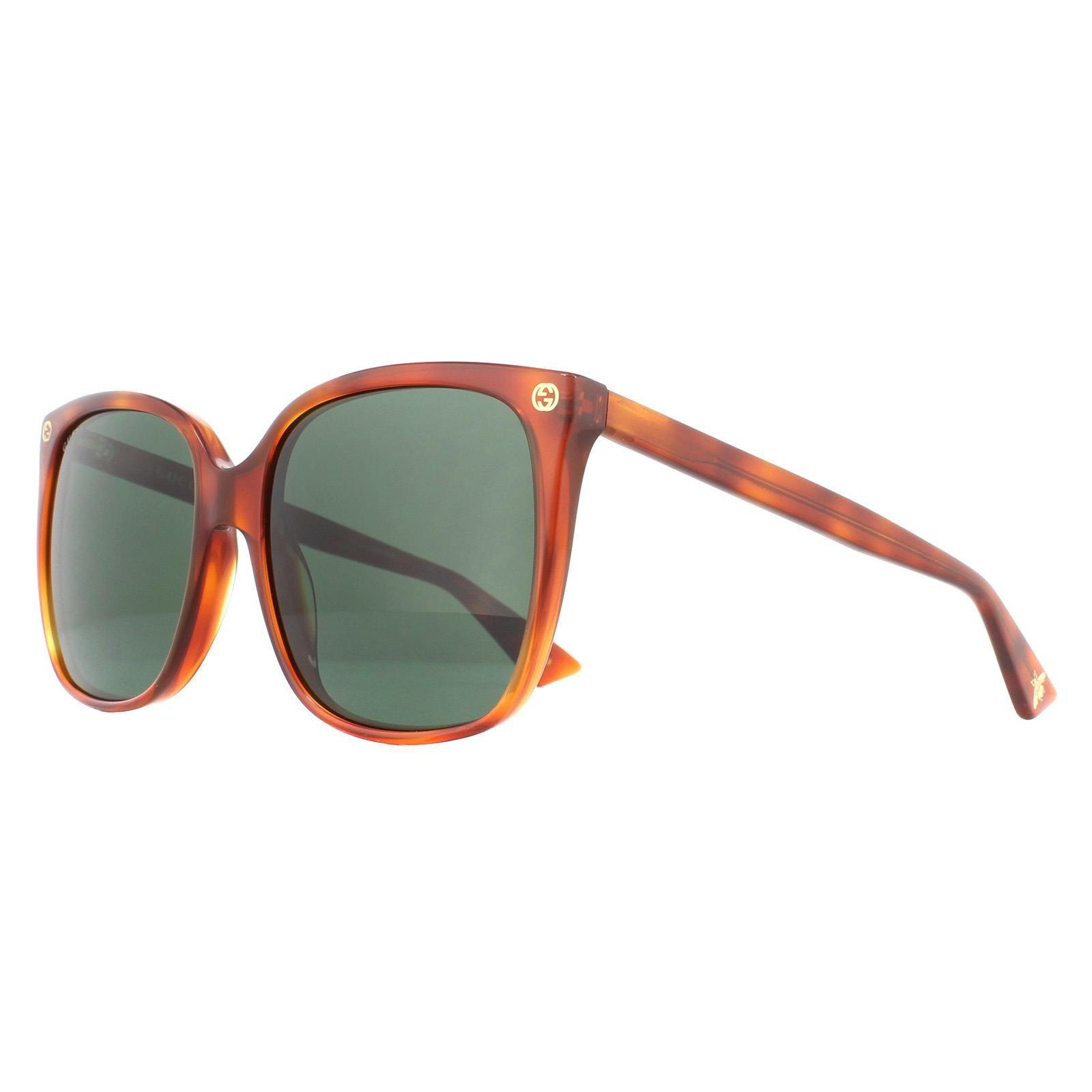 Gucci Sunglasses GG0022S 002 Havana Green