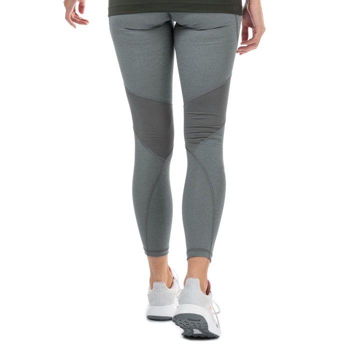 Women's adidas Alphaskin Sport Long Tights in Grey