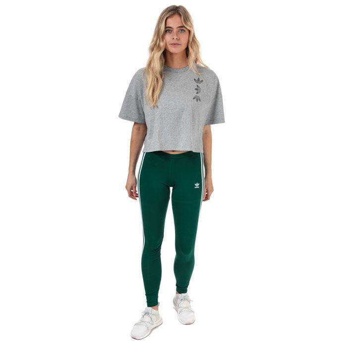 Women's adidas Originals 3-Stripes Leggings in Green
