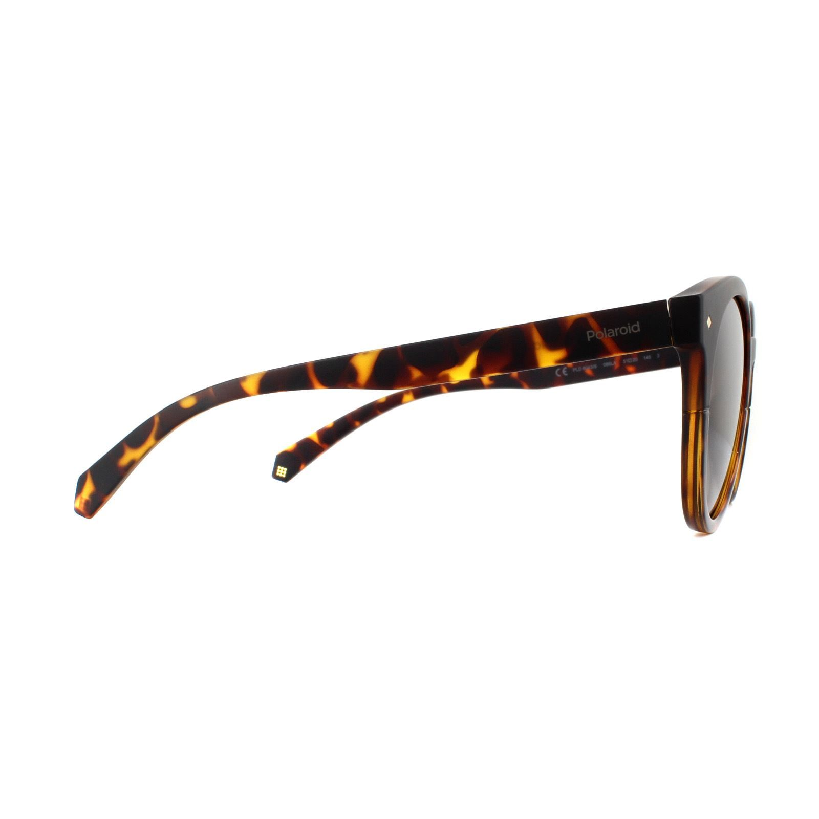Polaroid Sunglasses PLD 6043/S 086 LA Dark Havana Brown Gradient Polarized