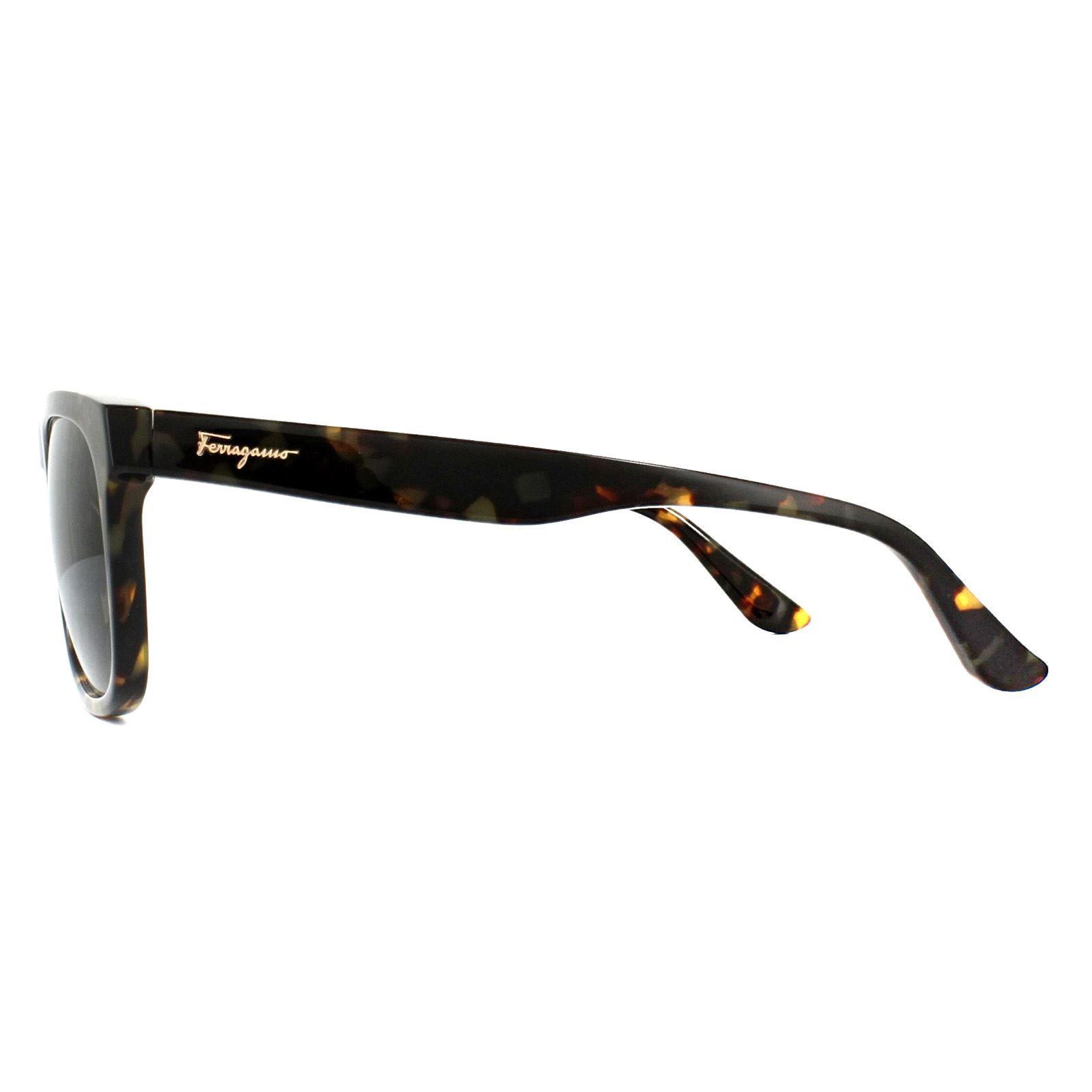 Salvatore Ferragamo Sunglasses SF776S 281 Vintage Tortoise Green