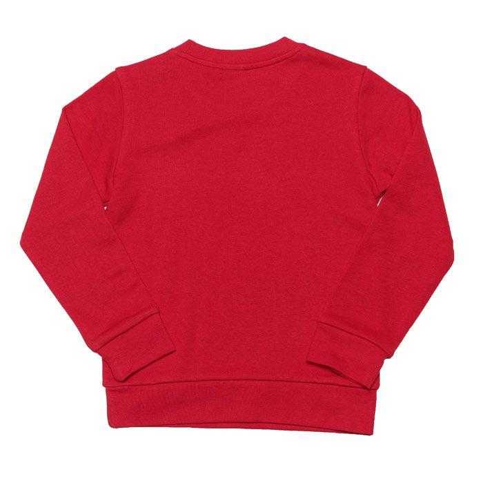 Boy's adidas Originals Junior Crew Sweat in Red