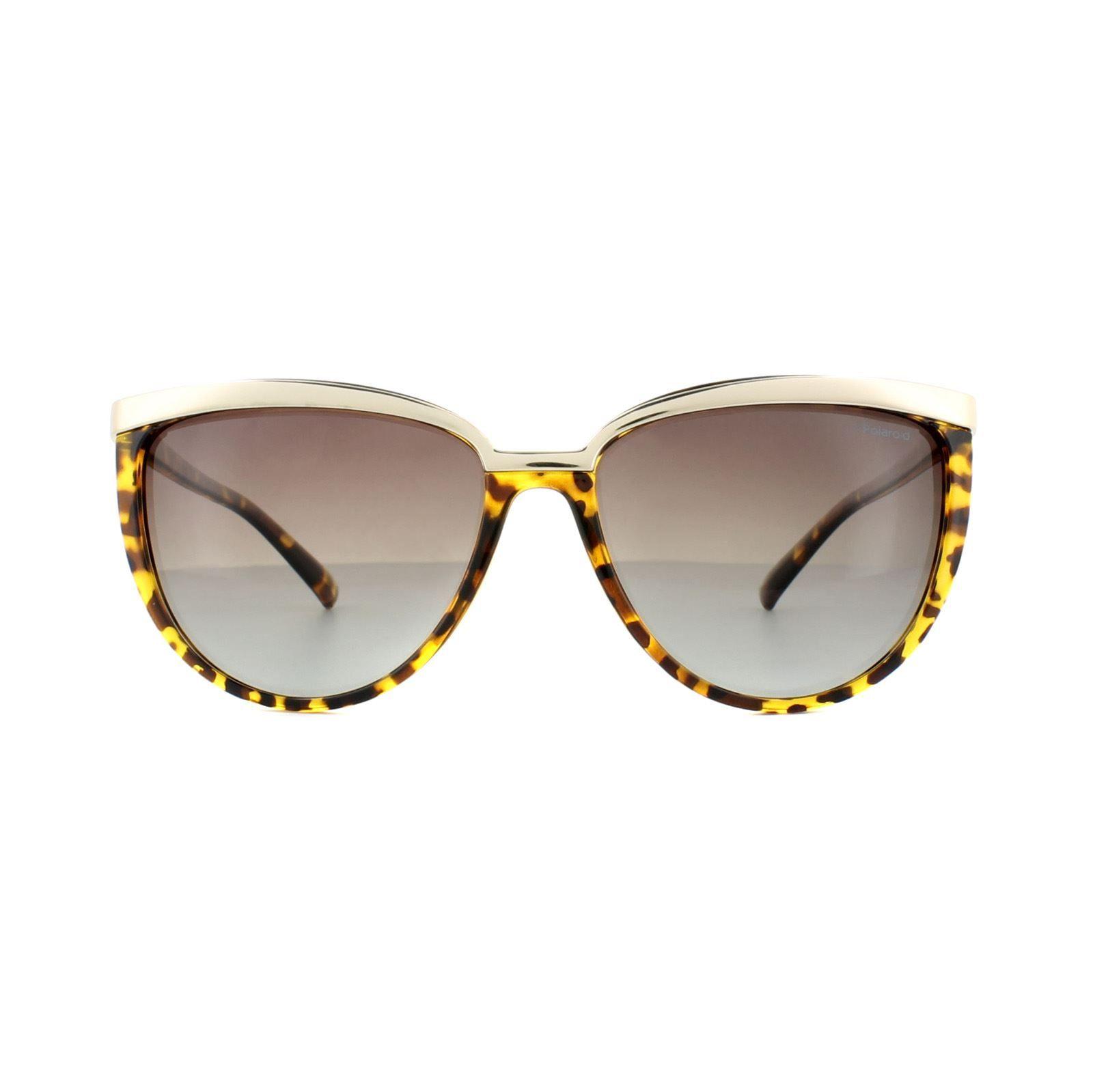 Polaroid Sunglasses 4016/S V08 LA Havana Gold Brown Gradient Polarized