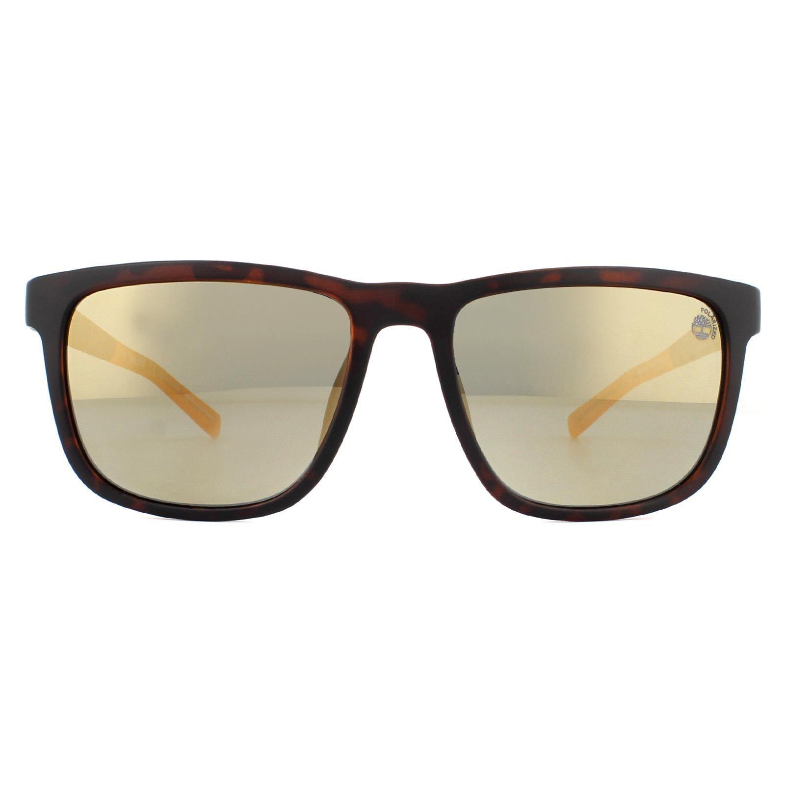 Timberland Sunglasses TB9162 52H Dark Havana Brown Polarized