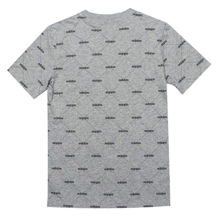Boy's adidas Junior Core Favourite T-Shirt in Grey