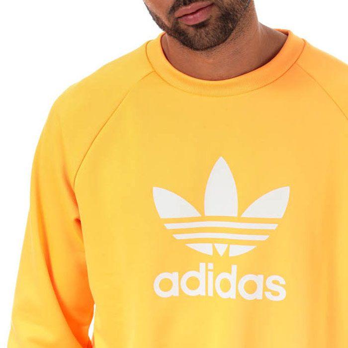 Men's adidas Originals Trefoil Crew Sweat in Orange