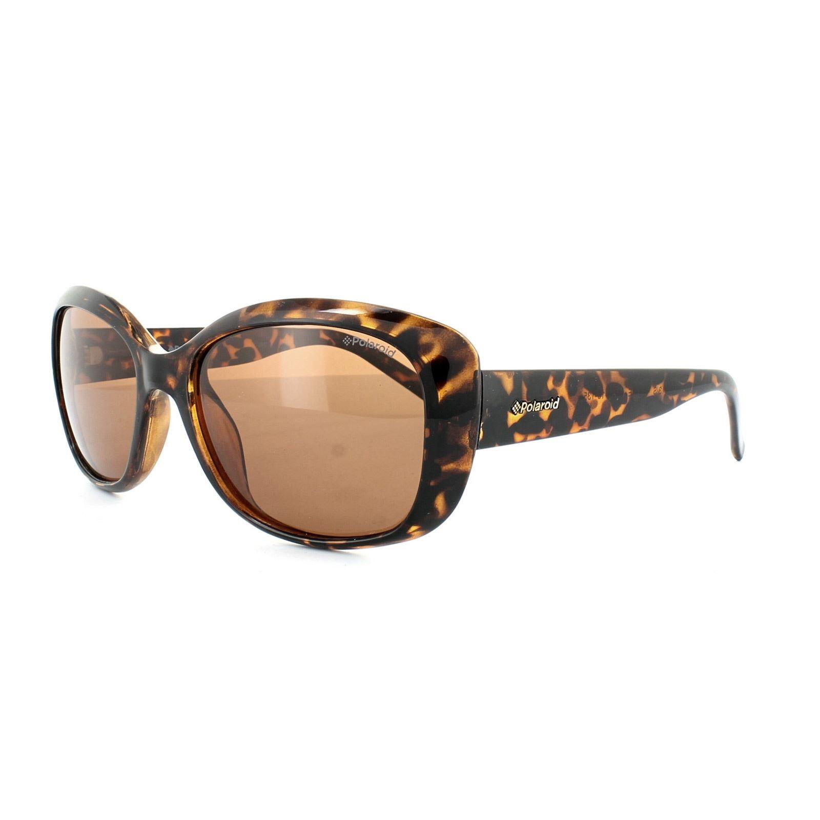 Polaroid Sunglasses 4013/S V08 HE Havana Copper Polarized