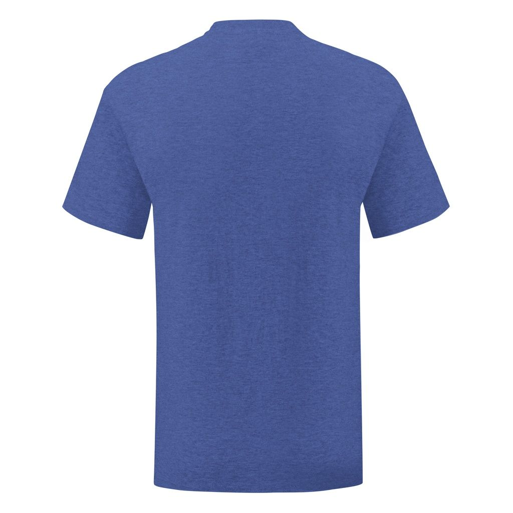 Fruit Of The Loom Mens Iconic T-Shirt (Pack of 5) (Heather Royal)