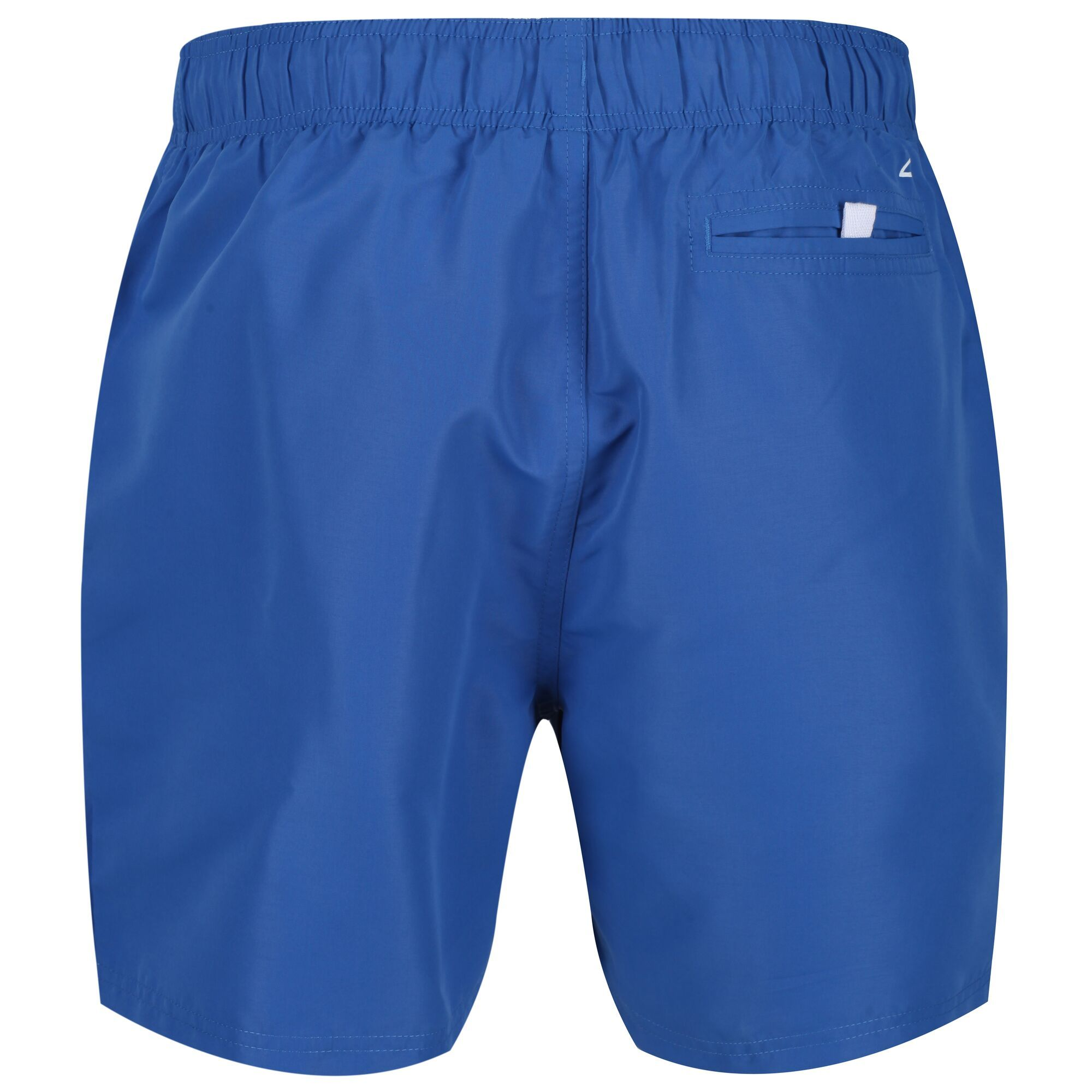 Regatta Mens Mawson II Swim Shorts (Nautical Blue)
