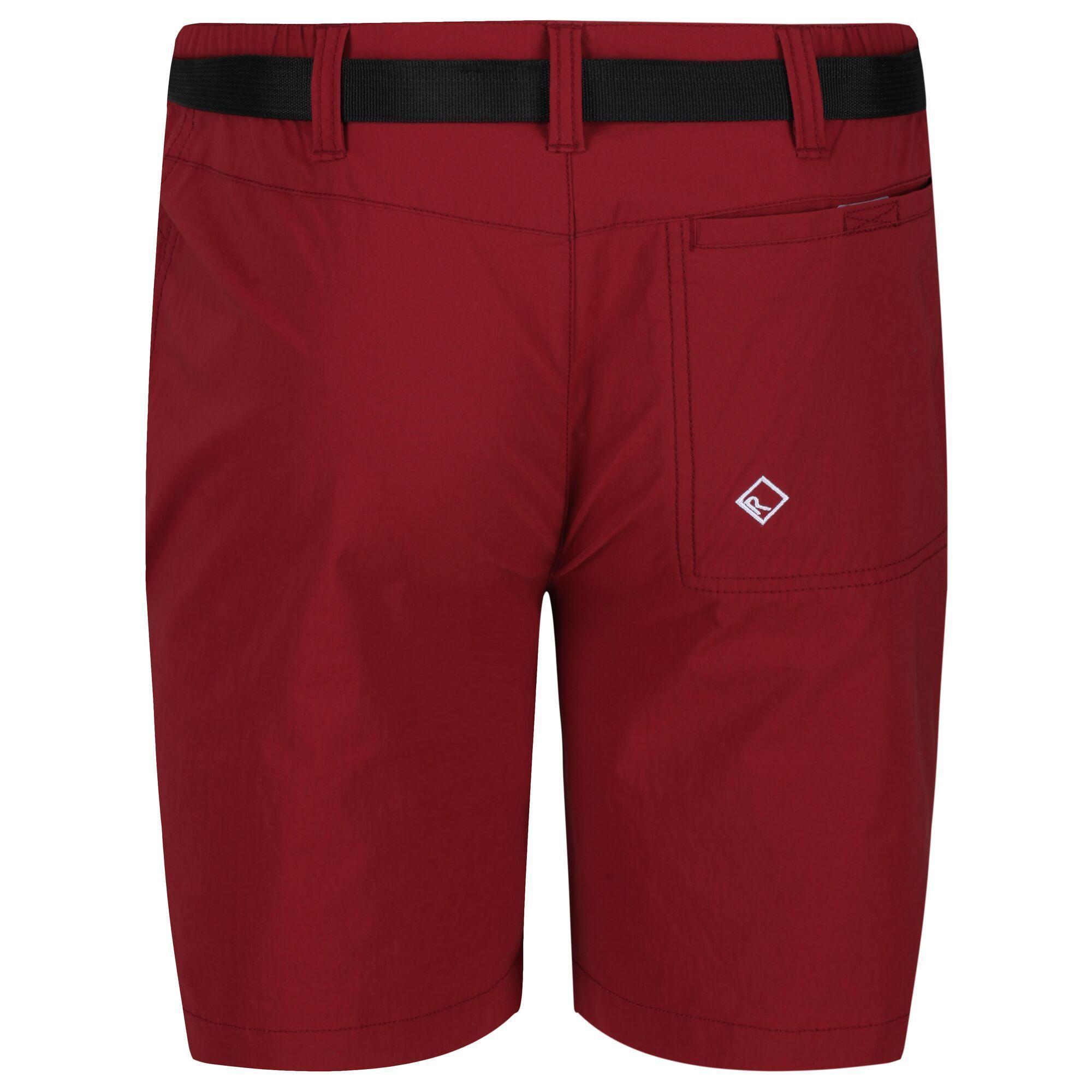 Regatta Mens Highton Mid Shorts