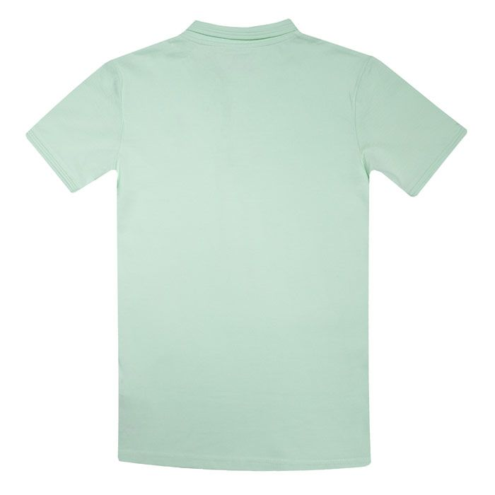 Boy's Original Penguin Infant Raised Tipped Polo Shirt in Green