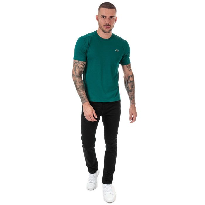 Men's Lacoste Regular Fit T-Shirt in Green