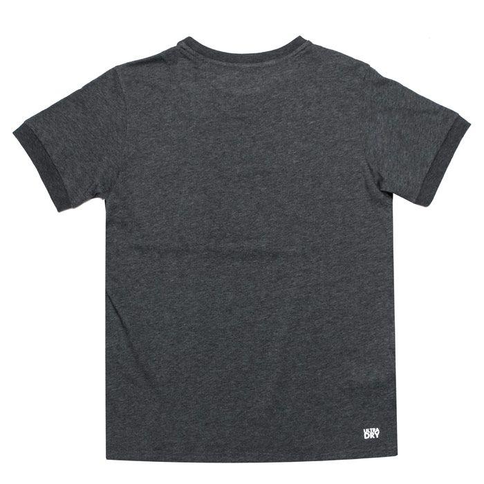 Boy's Lacoste Junior Sport Panel T-Shirt in Grey