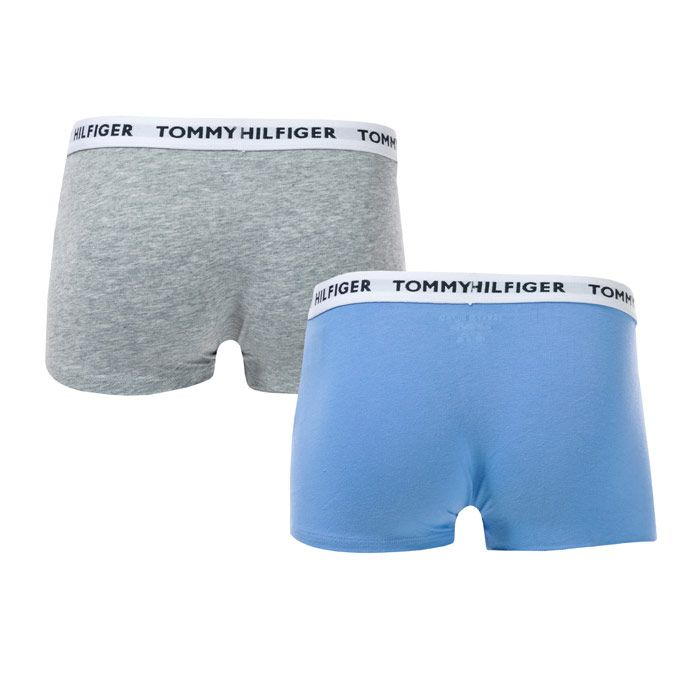Boy's Tommy Hilfiger Junior 2 Pack Trunks in Grey blue