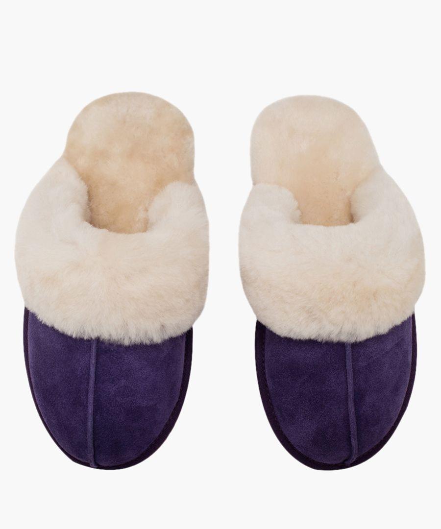 Purple suede sheepskin slippers